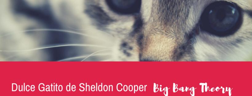 Dulce gatito de Sheldon Copper para ukelele