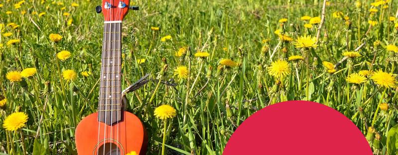 Las 5 cosas que no sabías sobre el ukelele